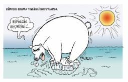 Kutup ayıları 3.jpg